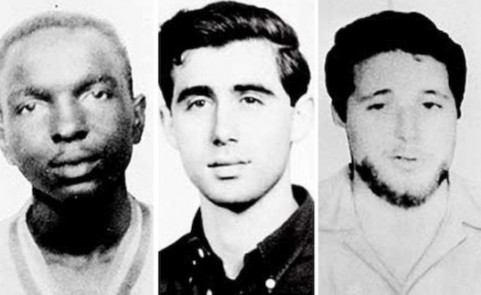 schwerner chaney goodman