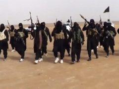 Islamic State: A Nimble Adversary
