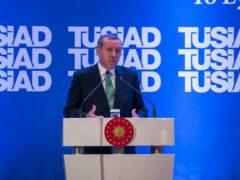 Turkey's Erdogan Is A Loose Cannon
