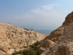 Exploring A Stunning Desert Reserve In Israel