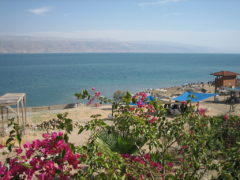 Bathing In The Brine Of The Dead Sea