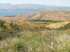 Israel Challenging Iran's Presence On The Golan