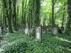 Poland's Neglected Jewish Cemeteries