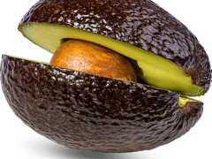 The Avocado War